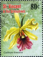 [Flowers - Orchids, Typ FNV]