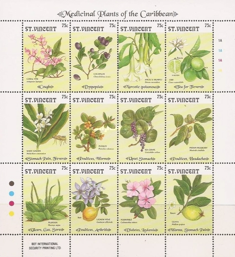[Medicinal Plants of the Caribbean, type ]