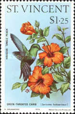 [Hummingbirds and Hibiscus Flowers, type IO]