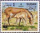 [Worldwide Nature Protection - African Wild Ass, type HA]