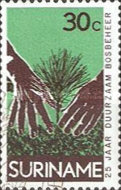 [The 25th Anniversary of Surinam Forestry Commission, Typ ADV]