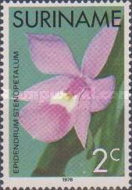 [Surinam Orchids, Typ AGD]