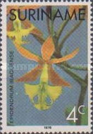 [Surinam Orchids, Typ AGF]
