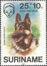 [Child Welfare - Pet Dogs, Typ AHE]