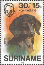 [Child Welfare - Pet Dogs, Typ AHF]