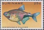 [Tropical Fish, Typ ANP]