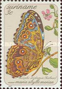 [Butterflies - Paintings by Maria Sibylle Merian, Typ ASR]