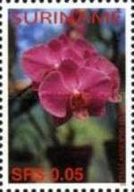 [Flora - Orchids, Typ CCD]
