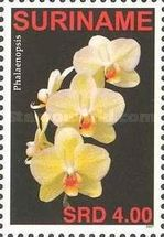 [Flora - Orchids, Typ CFY]
