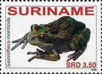 [Fauna - Frogs, Typ CMH]