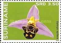 [Flowers - Orchids, Typ DCU]