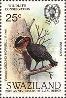 [Birds - The 200th Anniversary of the Birth of John James Audubon, type NI]