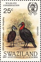 [Birds - The 200th Anniversary of the Birth of John James Audubon, type NK]