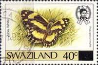 [Butterflies - Stamps of 1987 Surcharged, type OX1]