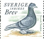[Doves and Pigeons, type BTG]