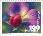[Flora - flowering Plants - Self Adhesive Stamps, typ CGC]