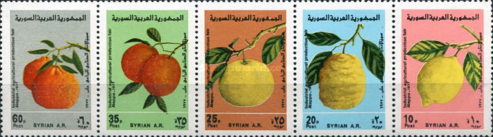 [The 17th Industrial and Agricultural Fair, Aleppo - Fruits, Typ ]