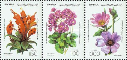 [The 21st International Flower Show, Damascus, type ]