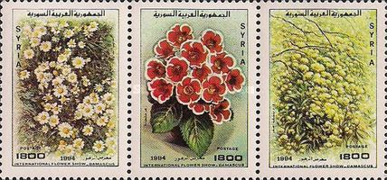 [The 22nd International Flower Show, Damascus, type ]