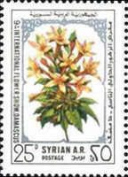 [The 9th International Flower Show, Damascus, type AGH]
