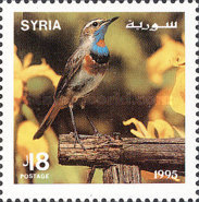 [Songbirds, type AVW]