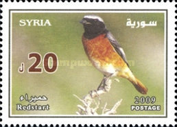 [Syrian Birds, type BJM]
