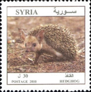 [Syrian Animals, type BKH]