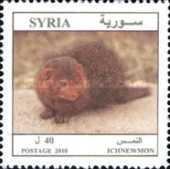 [Syrian Animals, type BKI]