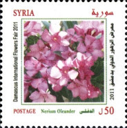 [Damascus International Flower Festival, type BLB]