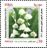 [Damascus International Flower Festival, type BLC]