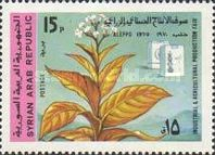 [National Industrial and Agricultural Fair, Aleppo, Typ UG]