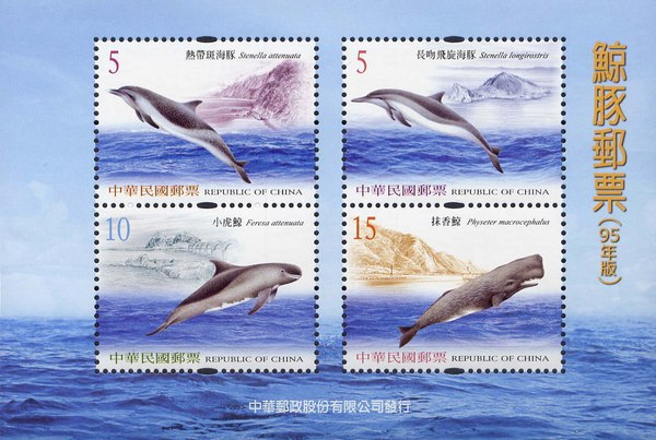 [Dolphins and Whales, Typ ]