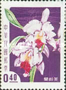 [Taiwan Orchids, Typ BX]