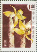 [Taiwan Orchids, Typ BY]
