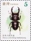 [Stag Beetles of Taiwan, Typ DCS]