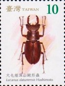 [Stag Beetles of Taiwan, Typ DCT]