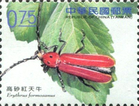 [Long-Horned Beetles, Typ DHZ]