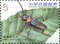 [Long-Horned Beetles, Typ DIB]