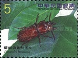 [Insects -  Long-Horned Beetles, Typ DSV]