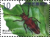 [Insects -  Long-Horned Beetles, Typ DSX]