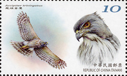 [Conservation of Birds, type EPC]