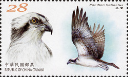 [Conservation of Birds, type EPD]