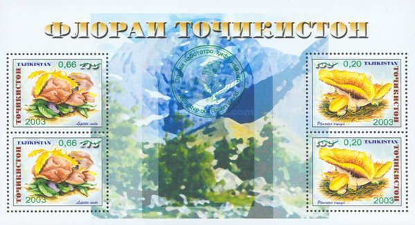 [Environmental Protection - With Green Overprint, type ]
