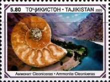 [Paleontology in Tajikistan, type AFL]