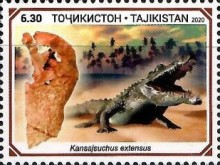 [Paleontology in Tajikistan, type AFM]