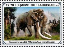 [Paleontology in Tajikistan, type AFP]