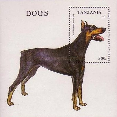 [Dogs, type ]