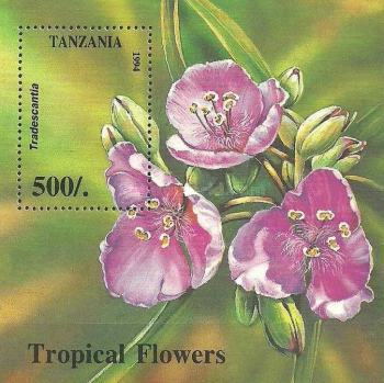 [Tropical Flowers, Typ ]