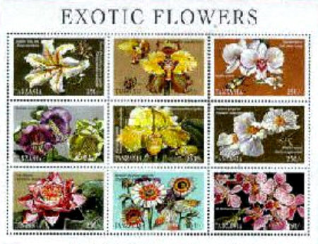 [Flowers from Around the World, Typ ]