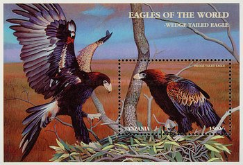 [Eagles from Around the World, Typ ]